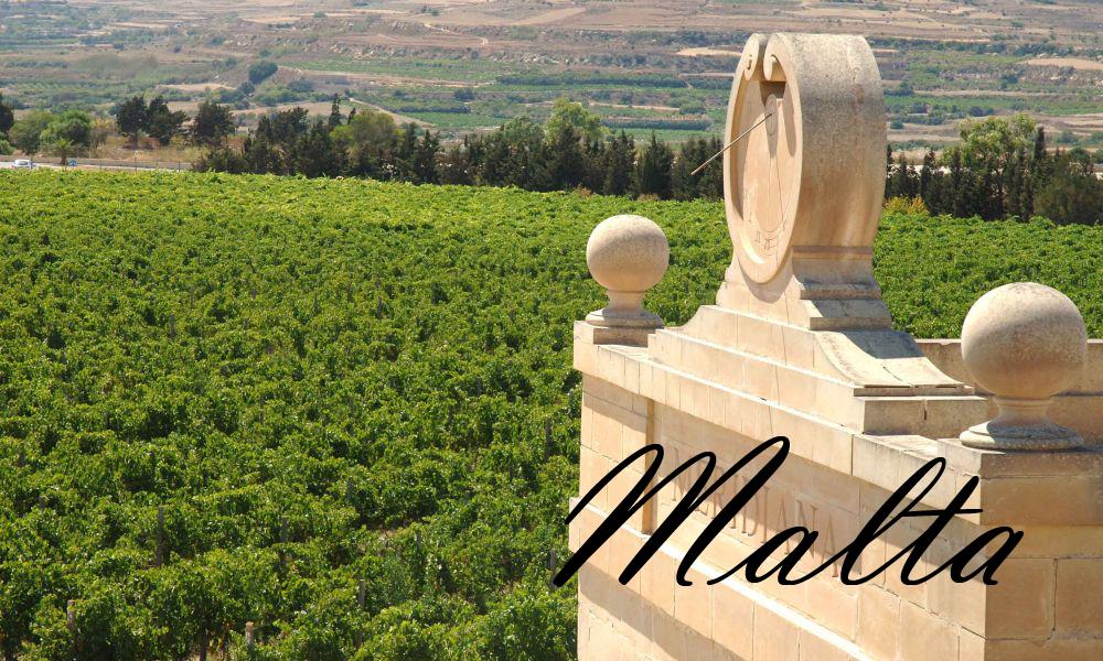 Weinprobe in Malta